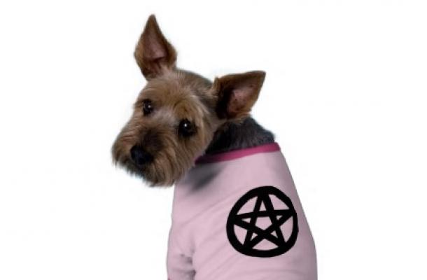 EvilCrummyHelldog-Audioccult