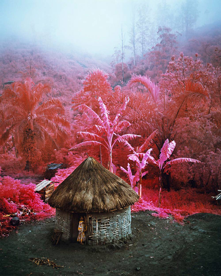 Come Out (1966) II, North Kivu, eastern Democratic Republic of Congo, 2011. Richard Mosse, courtesy of the artist and Galerie earlier gebauer.