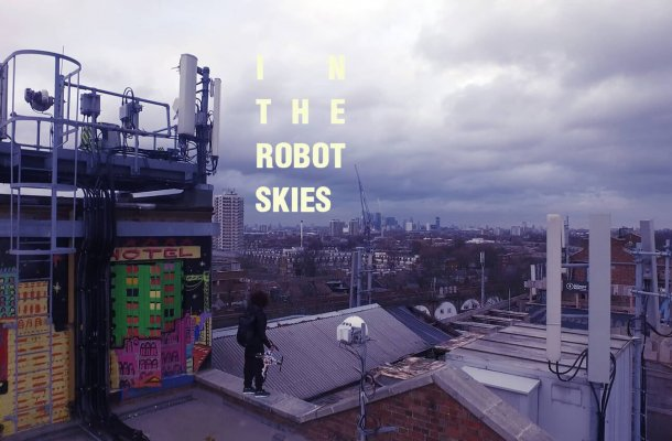 In The Robot Skies Cover
